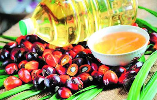 buy-non-edebal-oil-in-udaipur